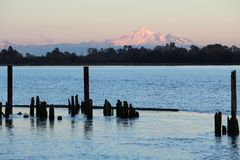 Mount Baker View, Fraser River Royalty Free Stock Photography