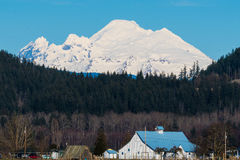 Mount Baker. Viewed from Skagit Valley, WA Royalty Free Stock Photo
