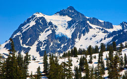 Mount Baker, Washington Royalty Free Stock Images
