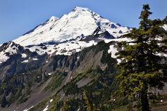 Mount Baker Washington State Royalty Free Stock Images