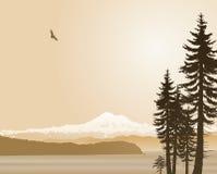 Mount Baker Washington State in sepia Royalty Free Stock Image