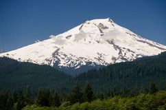 Mount Baker, Washington State Royalty Free Stock Image