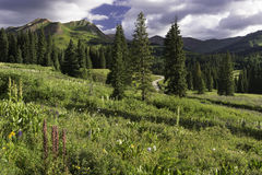 Mount Bellview from Gothic Campground in Colorado Stock Images