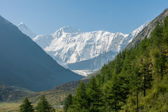 Mount Belukha, morning. Trekking in the Altai Mountains Royalty Free Stock Photography