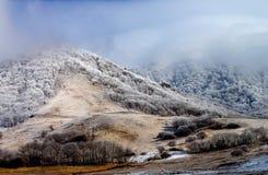 Mount Beshtau Hills Stock Images
