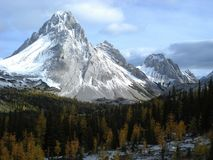 Mount Birdwood in the Canadian Rockies Stock Photo