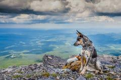 Mount Black Rock Royalty Free Stock Photo