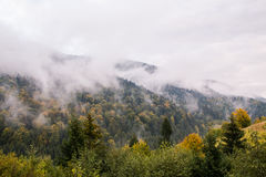 Mount breathe. Beautiful Carpathian mountains in October, near the lake Synevyr Royalty Free Stock Photography