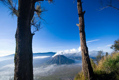 Mount Bromo stock images