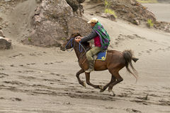 MOUNT BROMO HORSE Stock Photo