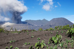 Mount Bromo - Indonesia Royalty Free Stock Images