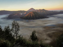 Mount Bromo in Indonesia Stock Image