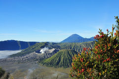 Mount Bromo, Java, Indonesia Royalty Free Stock Photo