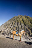 Mount Bromo in Java Indonesia Stock Photography