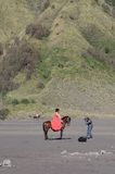 MOUNT BROMO, JAVA INDONESIA - JUNE 28, 2014: Undefined model posing on a horse under the Bromo massif. Royalty Free Stock Images