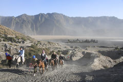 Mount bromo volcano horseback tour java Royalty Free Stock Images