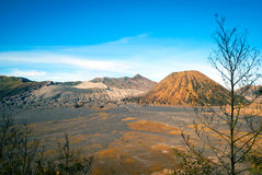 Mount Bromo volcanic plateau, Java, Indonesia Stock Photography