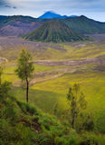 Mount Bromo volcano, East Java, Indonesia Stock Image