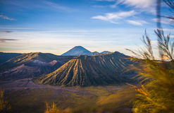 Mount Bromo volcano, Indonesia. Mount Bromo is an active volcano, Indonesia stock image