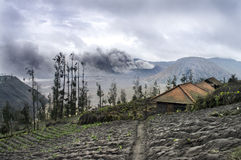 Mount Bromo volcano, Java Royalty Free Stock Images
