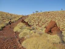 Mount Bruce near Karijini National Park, Western Australia. Beautiful Karijini National Park, Western Australia Royalty Free Stock Photography