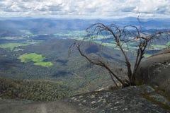 Mount Buffalo in Australia Royalty Free Stock Images