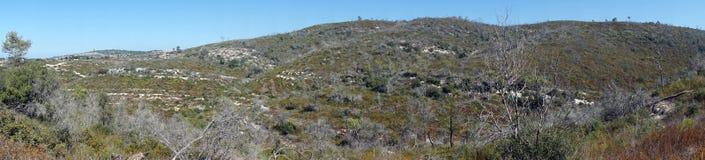 Mount Carmel стоковые фотографии rf