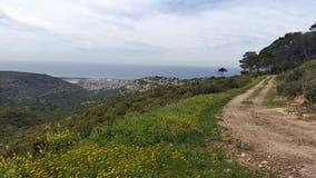 Mount Carmel Arkivfoto