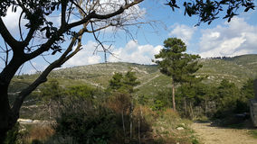 Mount Carmel Beit Oren Arkivfoto