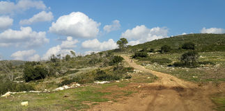Mount Carmel Beit Oren Arkivfoton