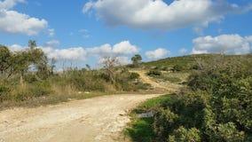 Mount Carmel Beit Oren Arkivbilder