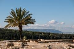 Mount Carmel from Megiddo Royalty Free Stock Photos