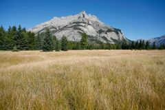 Mount Cascade in Banff National Park Stock Images