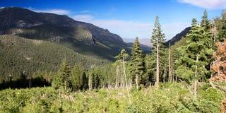 Mount Charleston Landscape Nevada Royalty Free Stock Images
