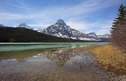 Mount Chephren and tree. Landscape from Icefield Parkway - Alberta, Canada stock photos