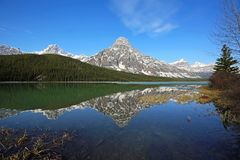 Mount Chephren and trees On Waterfowl Lake. Banff National Park, Alberta, Canada stock image
