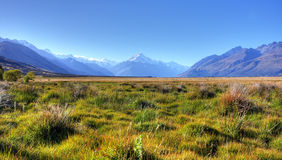Mount Cook. In New Zealand on a blue day Royalty Free Stock Photo