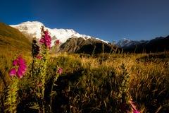 Mount Cook Glacier Royalty Free Stock Photos