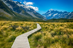Mount cook from the Hooker Valle Royalty Free Stock Photography