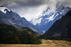Mount Cook National Park Stock Images