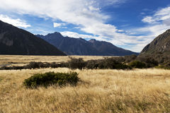 Mount Cook National Park Royalty Free Stock Image