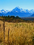 Mount Cook, New Zealand. Sunny day with field in foreground Stock Photos