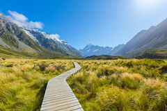 Mount Cook, New Zealand Royalty Free Stock Photo