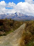 Mount Cook, New Zealand. Viewed from a distance, snow capped Stock Photo