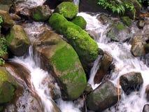 mount creek Fotografia Stock