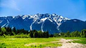 Mount Currie in the Coast Mountain Range just outside Pemberton Stock Images