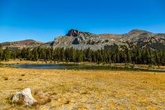 Mount Dana Stock Image