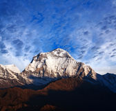 Mount Dhaulagiri, Nepal. Panorama of mount Dhaulagiri - view from Poon Hill on Annapurna Circuit Trek in the Nepal Himalaya stock images