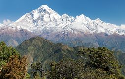 Mount Dhaulagiri - Nepal. View of mount Dhaulagiri - Nepal stock images
