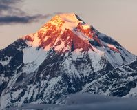 Mount Dhaulagiri with sunshine colored mountain top Stock Images